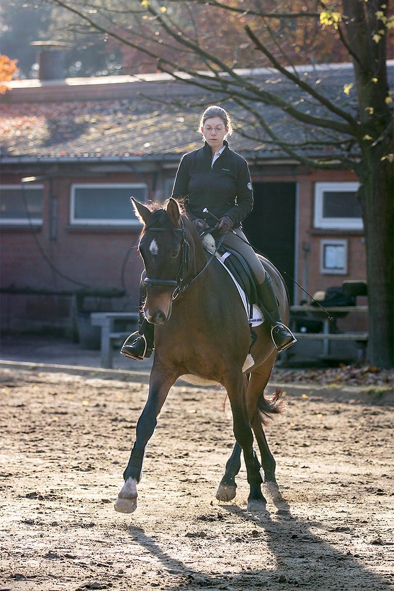 pferdegerechte Dressurausbildung, Losgelassenheit in der Traversale